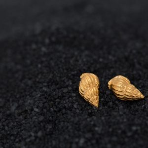 gold sea snail sea shell studs