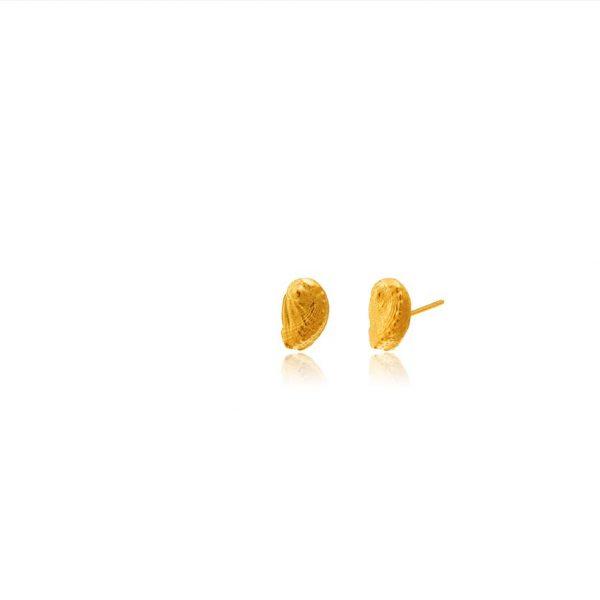 gold Abalone Seashell Studs